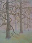В.В.Багдасарьян. Дубы. 2003. 50х40. Б.пастель.