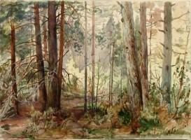 Грачёва-Митрофанова М.М. (1898-1968)